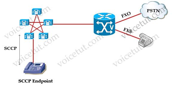 SCCP_Topology.jpg